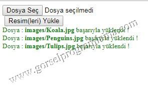coklu_secim3