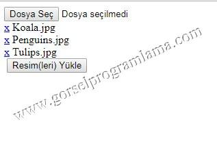 coklu_secim4